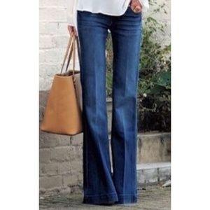 Banana Republic premium denim wide leg Jeans